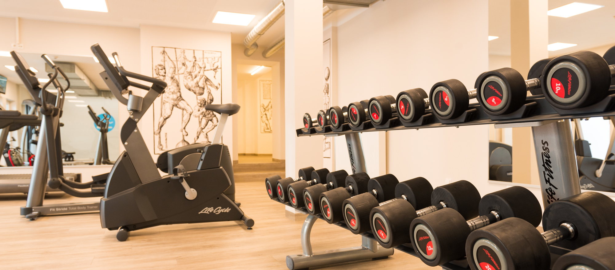 Fitness room in the  Ringhotel Loew's Merkur, 4 stars Hotel in Franconia