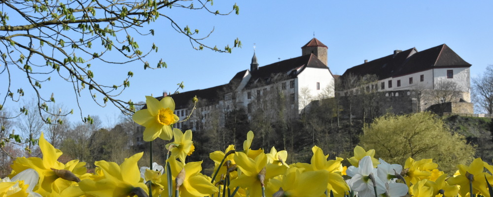 Bad Iburg castle - Excursion from the Ringhotel Landhotel Buller, 4-stars hotel in Hagen am Teutoburger Wald