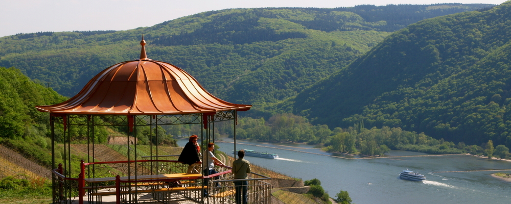 View from Assmannshausen mountain, Ringhotel Central in Ruedesheim, 3-star-superior hotel in the Rhine-Main-Area