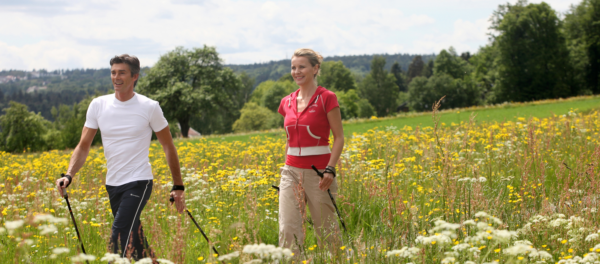 Hiking at the Ringhotel Moenchs Waldhotel in Unterreichenbach, 4-star hotel in the Black Forest